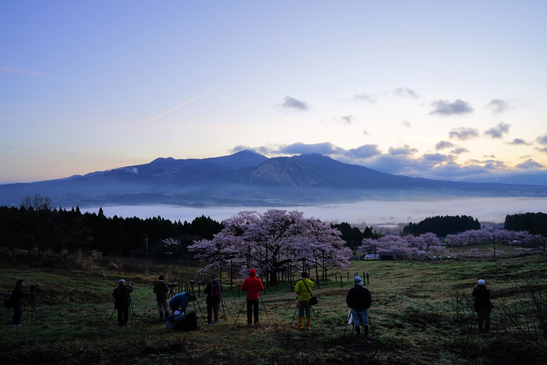Landscape-ⅱ