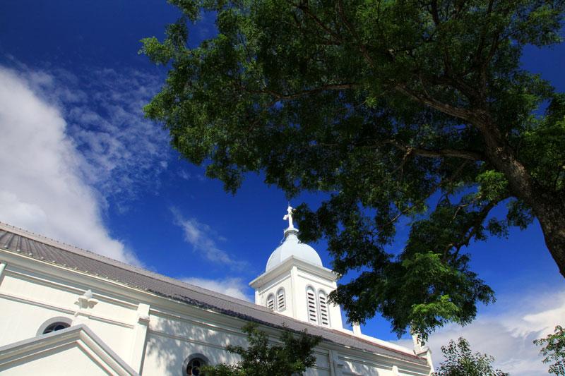 空高く 神の宿りし 大木に