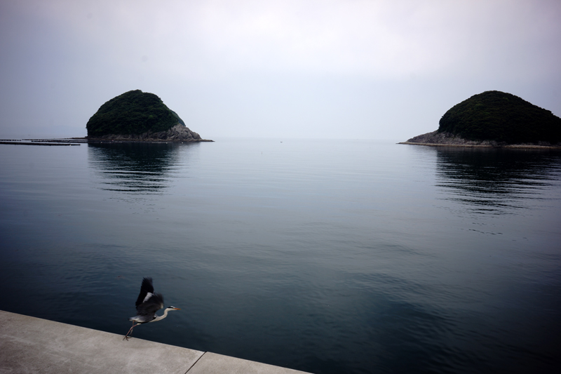 時は今 海に向かいて 飛び立とう  at Isahaya Nagasaki(結の浜)