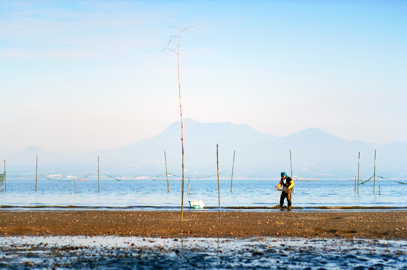 雲仙と 有明の海 潮干狩り  at Isahaya Nagasaki