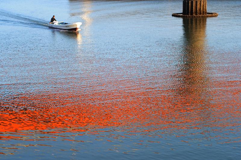 橋の色 海に反射し 黄昏か  at Kashima Nagasaki