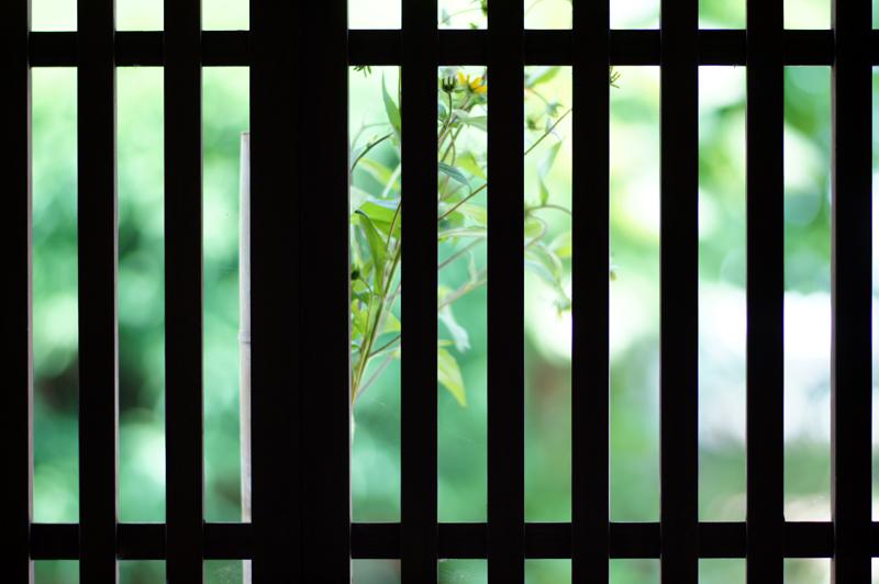 格子戸を 内から望み 悦に入り  at Ota Shimane(石見銀山)