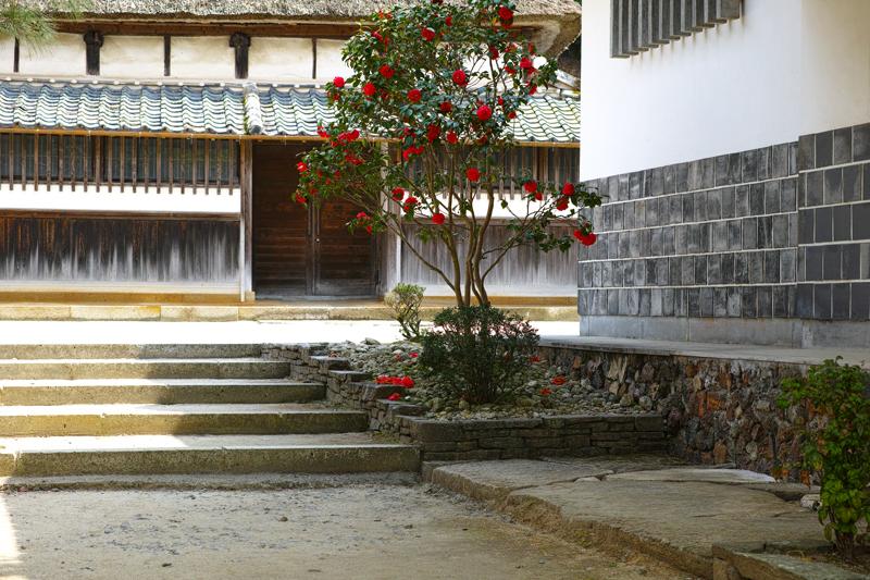 at Arita Saga(柿右衛門窯)
