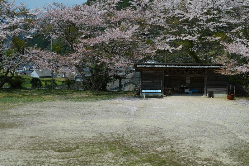 at Hasami Nagasaki(中尾郷)