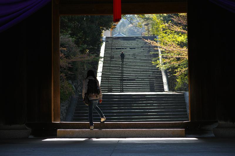 at Kyoto(知恩院)