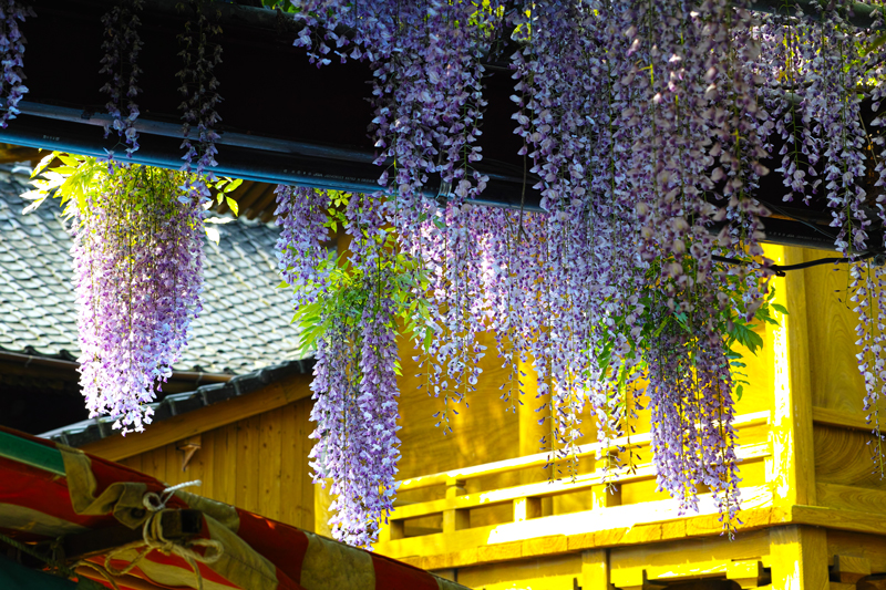 at Kuroki Fukuoka