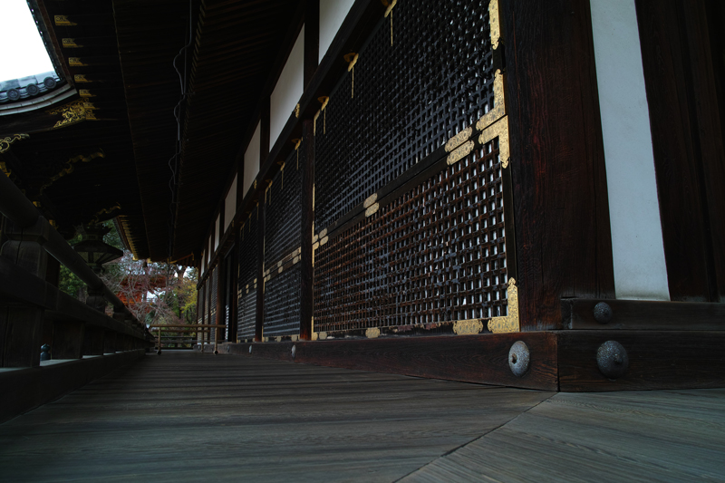 at Kyoto(仁和寺)