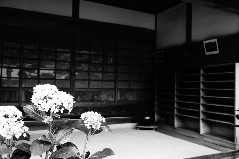 at Kurume Fukuoka(千光寺)