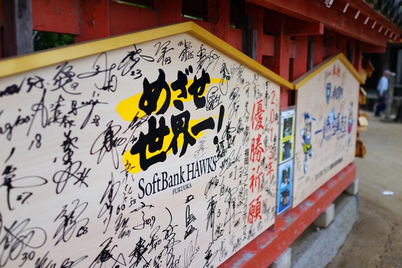 at Fukuoka(筥崎宮)