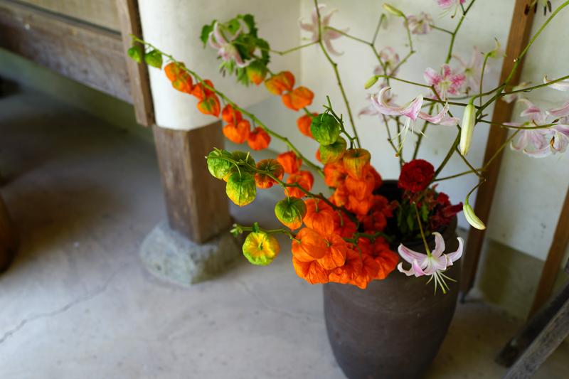 at Bugotakata Oita