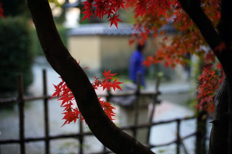 at Dazaifu Fukuoka(観世音寺)