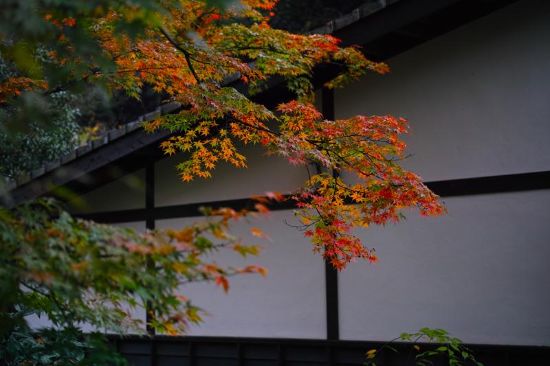 at Miyama Fukuoka(清水寺)