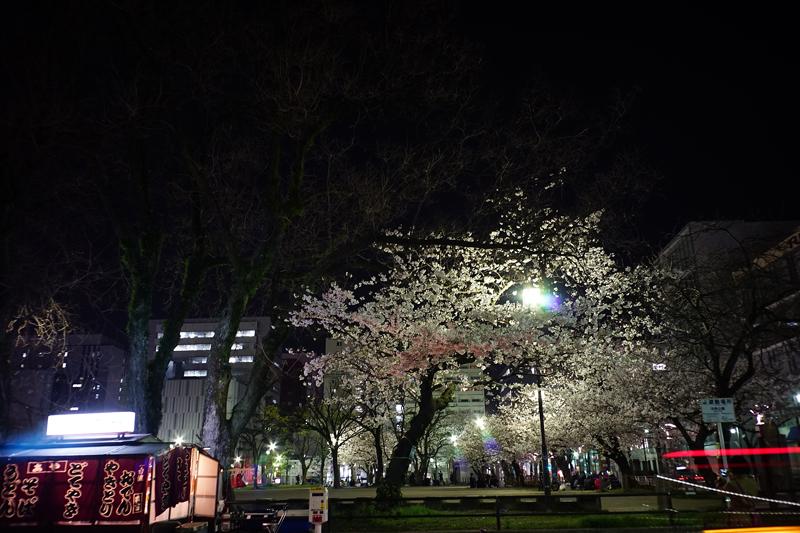 at Hakata Fukuoka(冷泉公園)