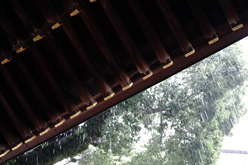 at Hakata Fukuoka(櫛田神社)