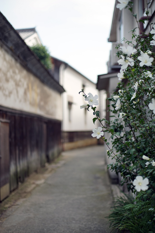 at Tomonoura Hiroshima