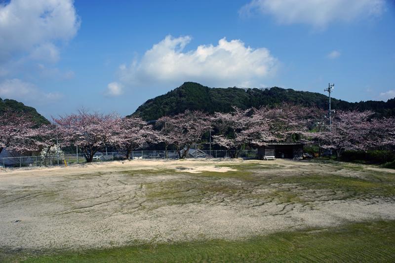 at Hsami Nagasaki(中尾山)