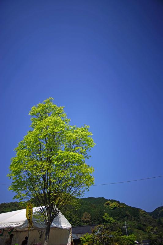 at Kiyama Saga(大興善寺)