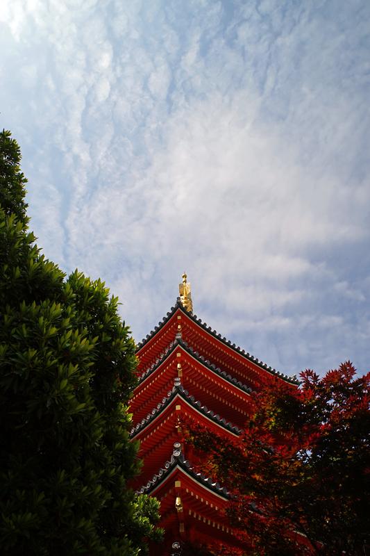 at Hakata Fukuoka(御供所町;東長寺)