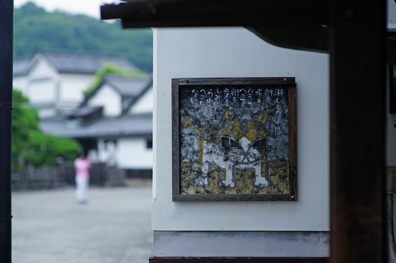 at Kurashiki Okayama(Square)