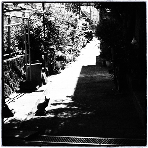 at Onomichi Hiroshima