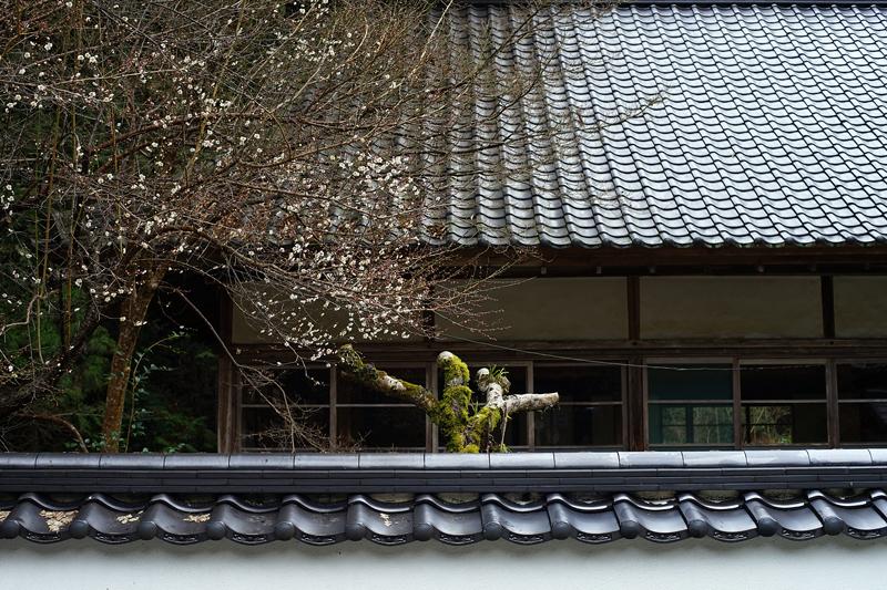 at Mihara Hiroshima(佛通寺)