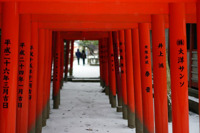 at Hakata Fukuoka(住吉神社)