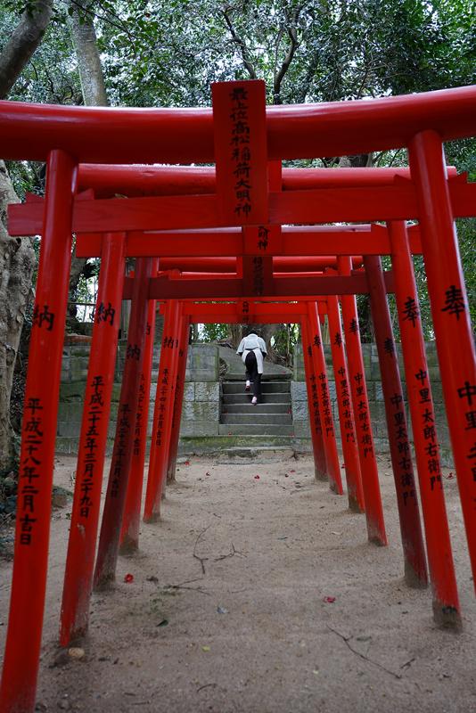 at Karatsu Saga(太郎右衛門窯)