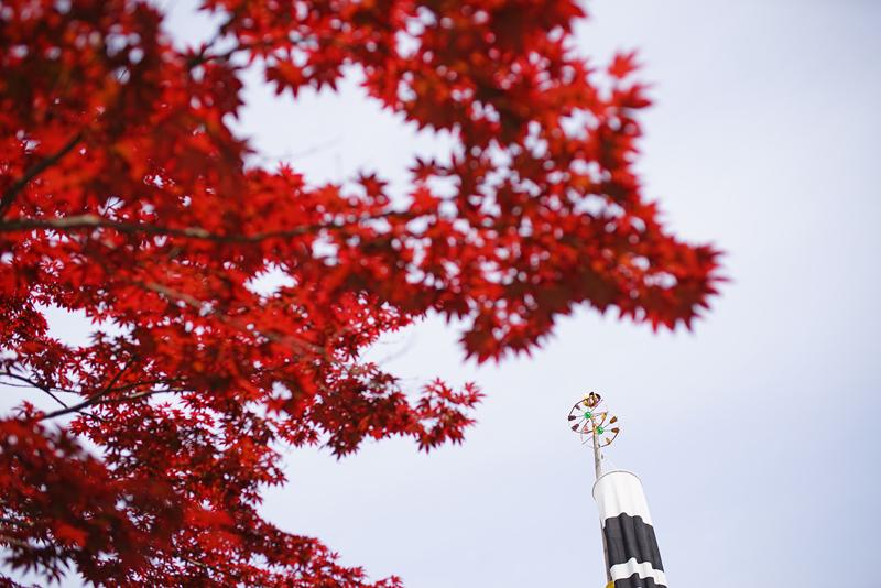 at Karatsu Saga(太郎衛門窯)