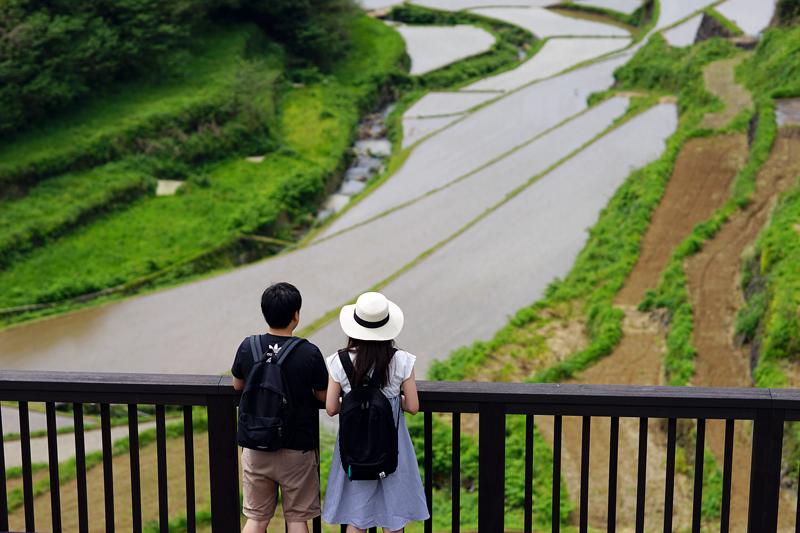 at Genkai Saga(浜野浦の棚田)
