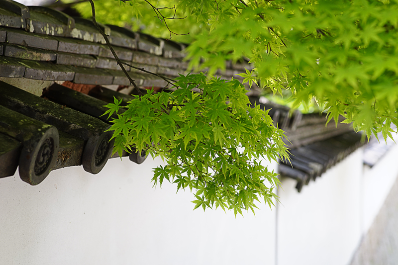 at Shimoseki Yamaguchi(長府毛利邸)