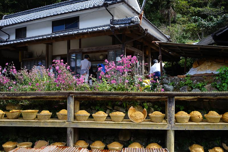 at Hita Oita(小鹿田焼民陶祭)