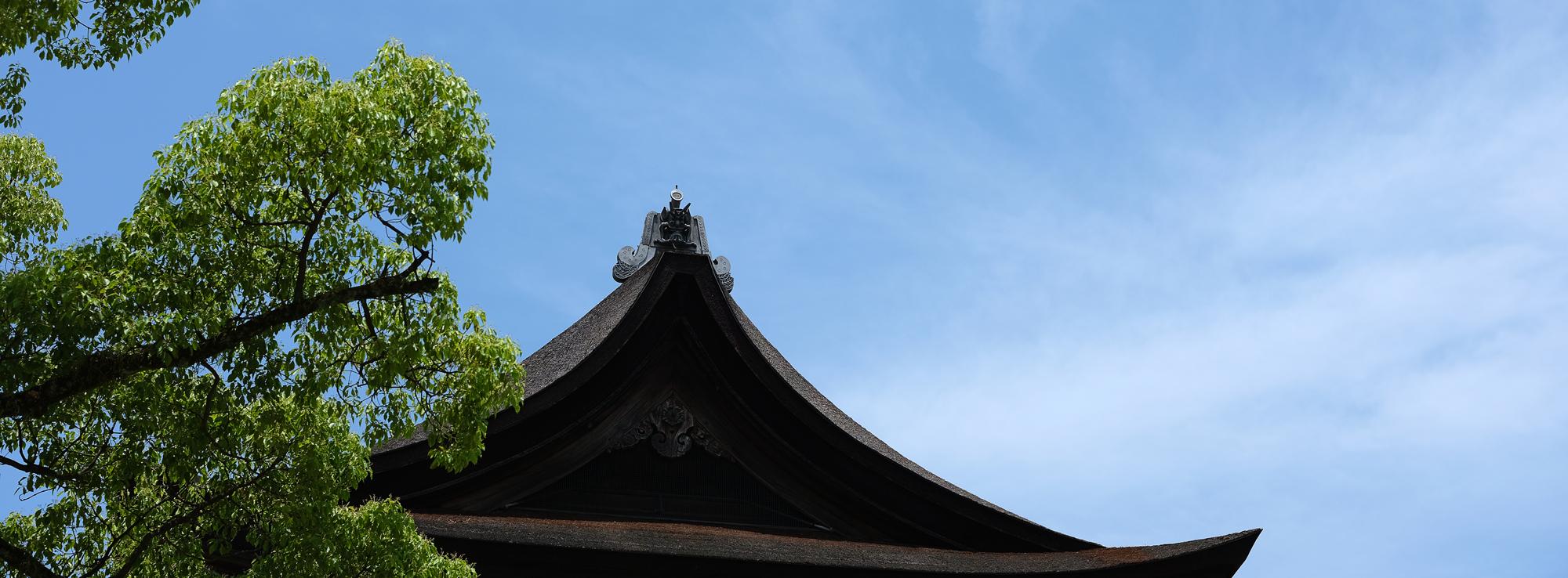 at Hakozaki Fukuoka