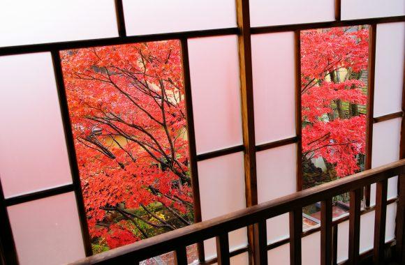 at Oda Shimane