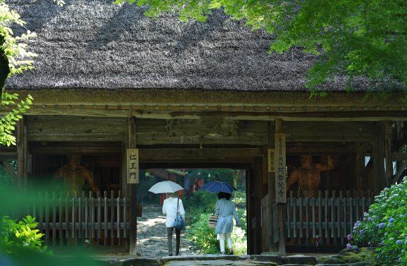at Yamaguchi