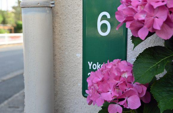 at FUKUOKA Z7 & Z24/70F4.0