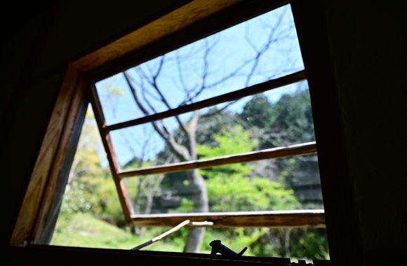 at SAGA by Z7 & Z24/70F2.8s 2021年最後の桜