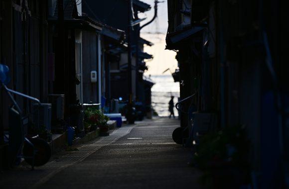at HIROSHIMA TOTORI SHIMANE by Z7 & Z70/200F2.8s