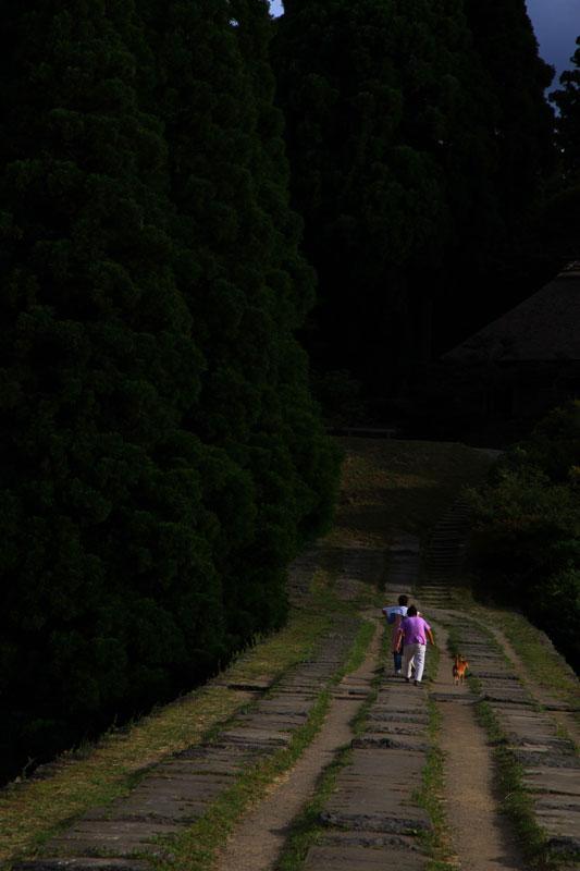 犬散歩 齢八十 通潤橋  at Kumamoto